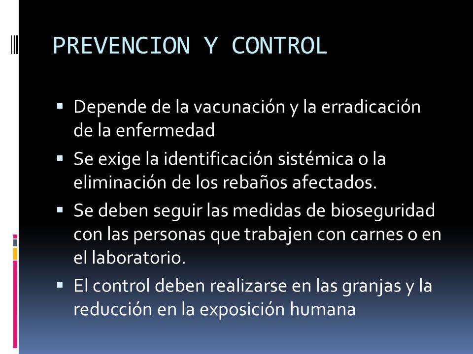 PREVENCION Y CONTROL Depende de la vacunación y la erradicación de la enfermedad.