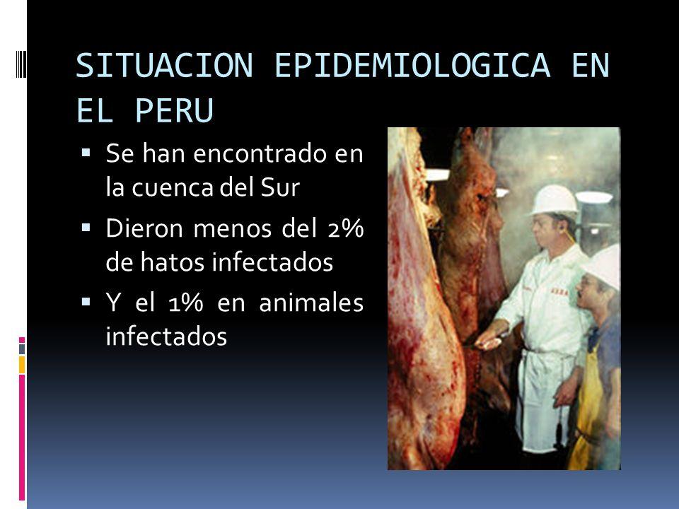 SITUACION EPIDEMIOLOGICA EN EL PERU
