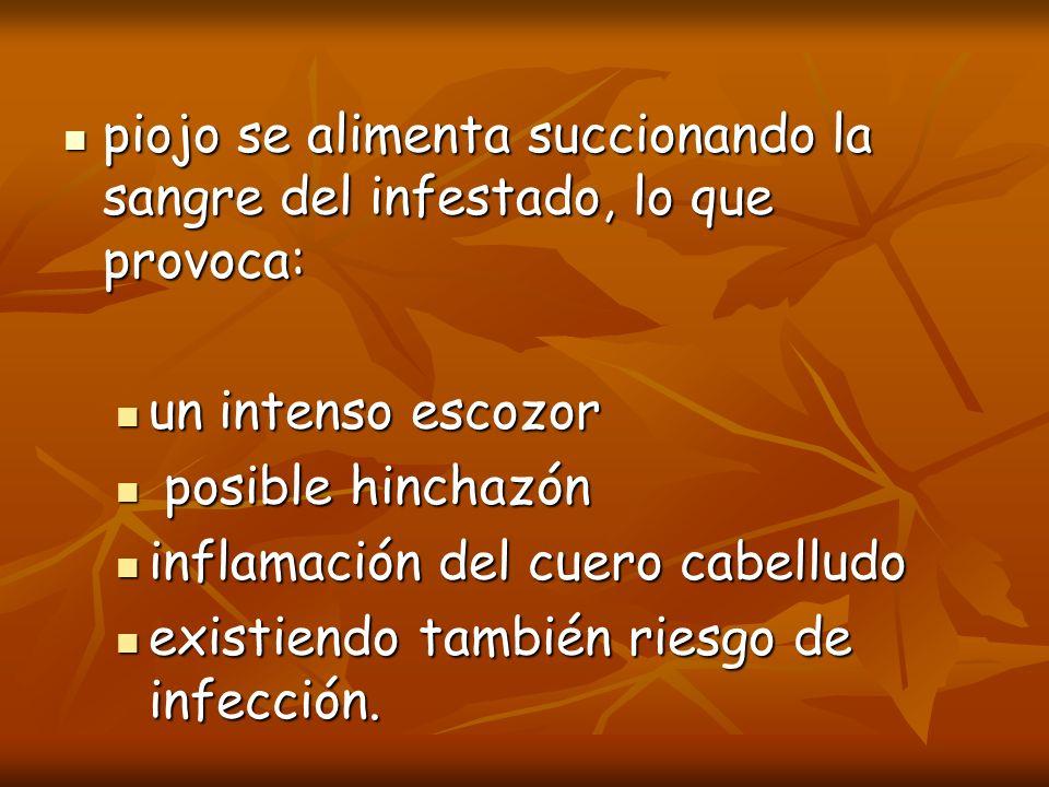 piojo se alimenta succionando la sangre del infestado, lo que provoca: