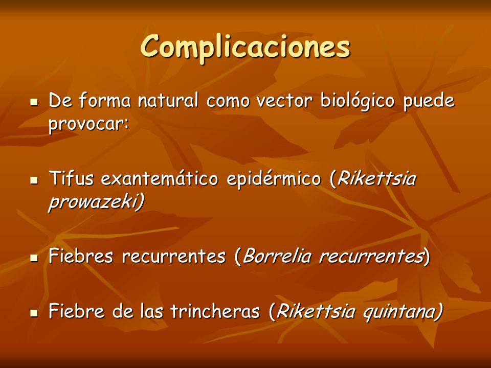 Complicaciones De forma natural como vector biológico puede provocar: