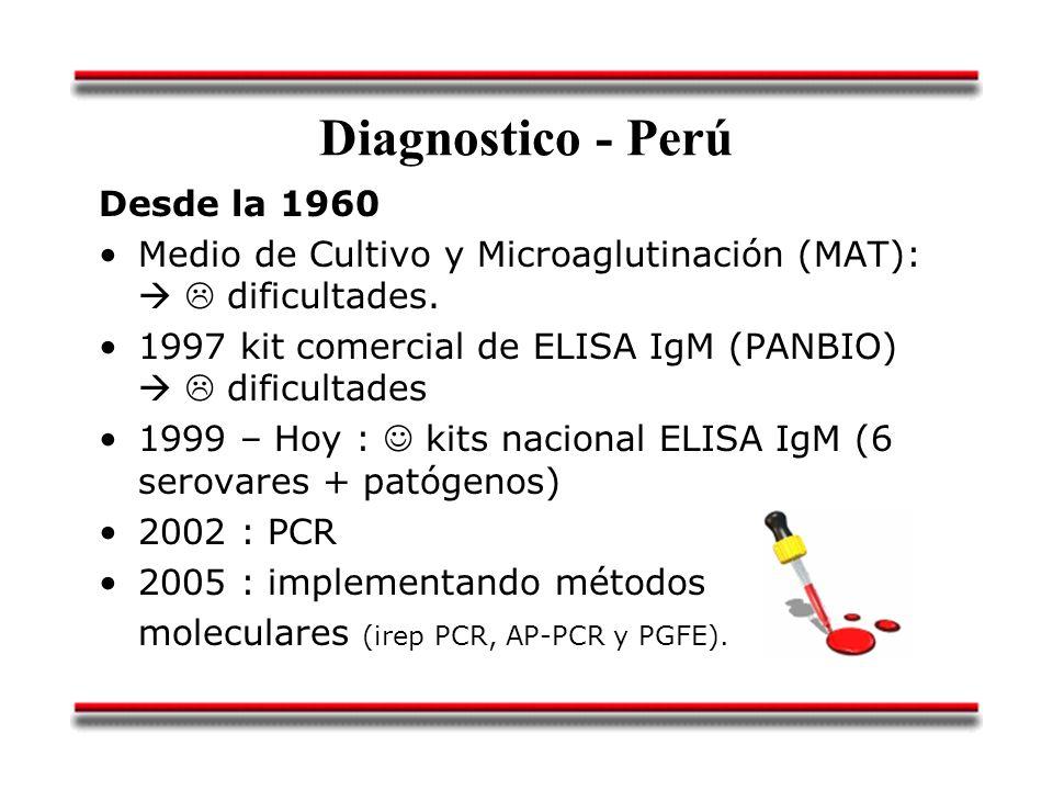 Diagnostico - Perú Desde la 1960