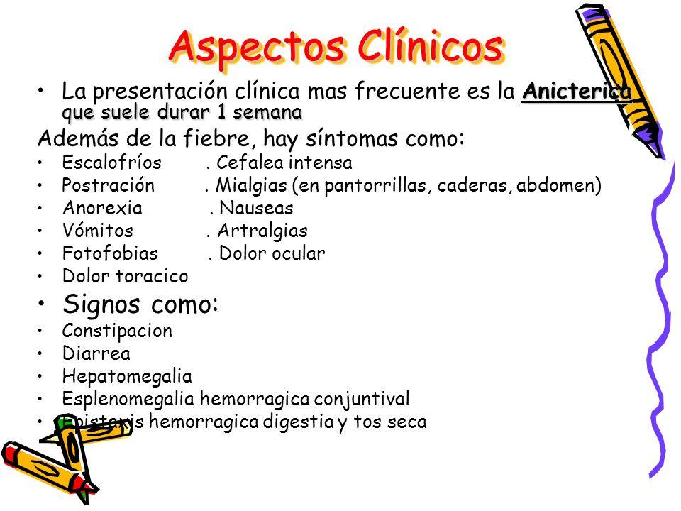 Aspectos Clínicos Signos como: