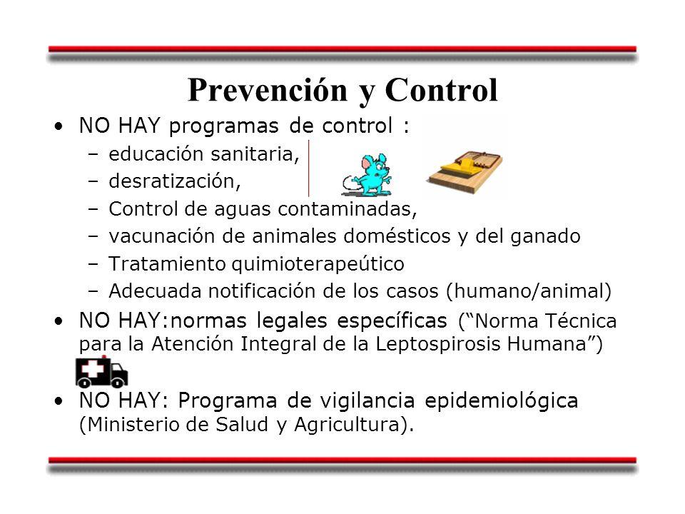 Prevención y Control NO HAY programas de control :
