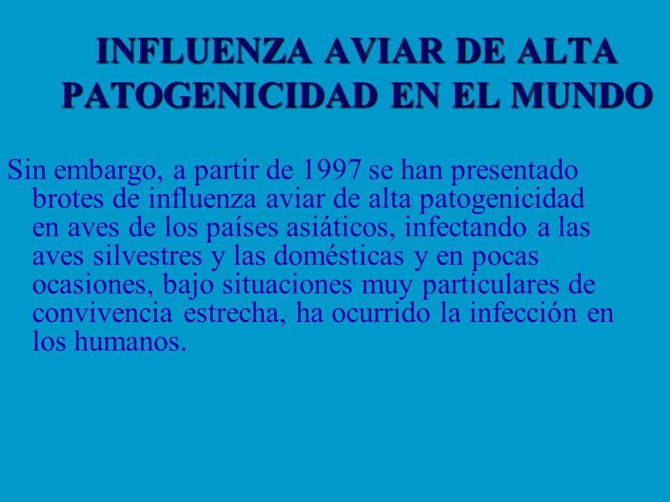 INFLUENZA AVIAR DE ALTA PATOGENICIDAD EN EL MUNDO