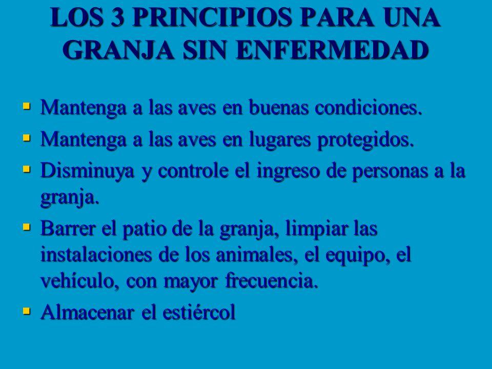 LOS 3 PRINCIPIOS PARA UNA GRANJA SIN ENFERMEDAD