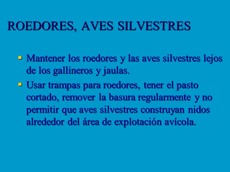 ROEDORES, AVES SILVESTRES