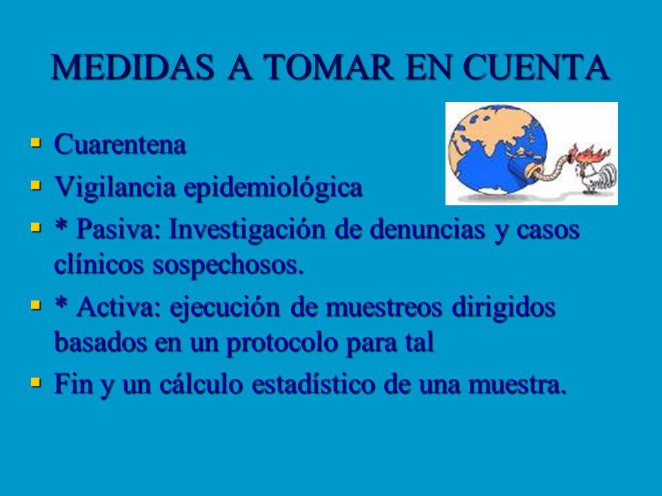 MEDIDAS A TOMAR EN CUENTA