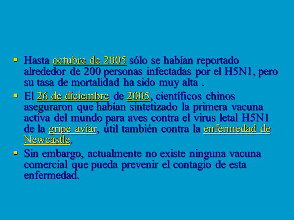 Hasta octubre de 2005 sólo se habían reportado alrededor de 200 personas infectadas por el H5N1, pero su tasa de mortalidad ha sido muy alta .