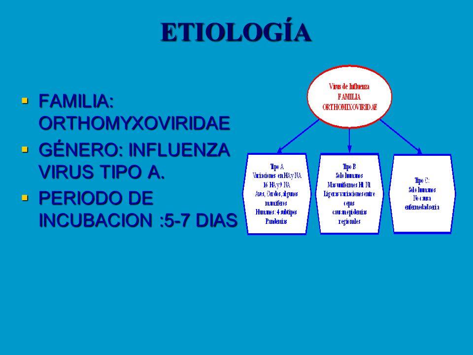 ETIOLOGÍA FAMILIA: ORTHOMYXOVIRIDAE GÉNERO: INFLUENZA VIRUS TIPO A.