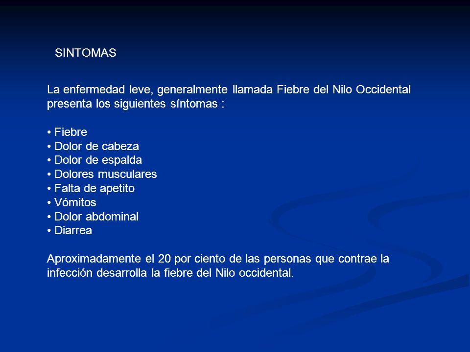 SINTOMAS La enfermedad leve, generalmente llamada Fiebre del Nilo Occidental presenta los siguientes síntomas :