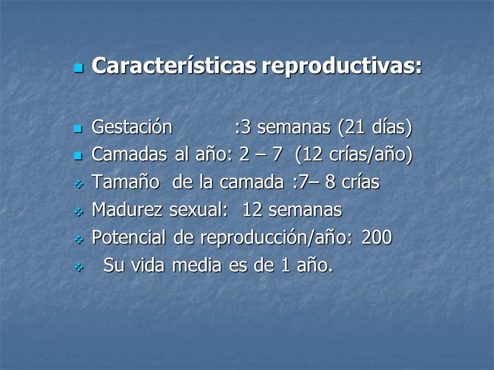 Características reproductivas: