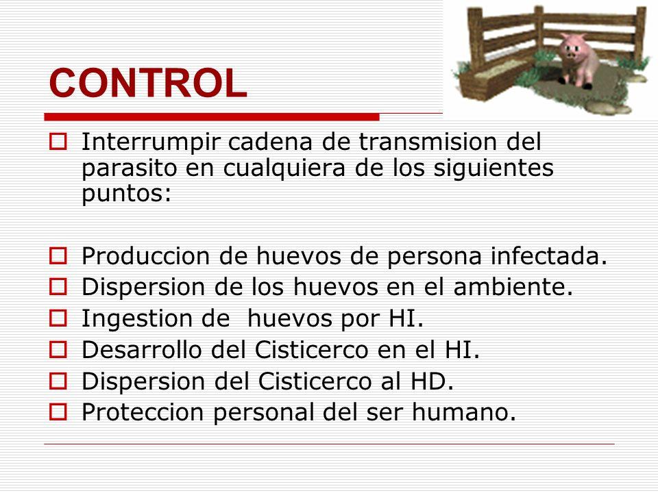 CONTROL Interrumpir cadena de transmision del parasito en cualquiera de los siguientes puntos: Produccion de huevos de persona infectada.