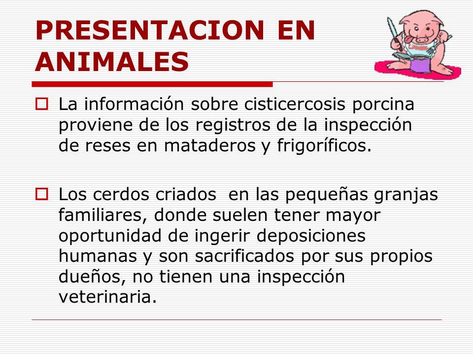 PRESENTACION EN ANIMALES