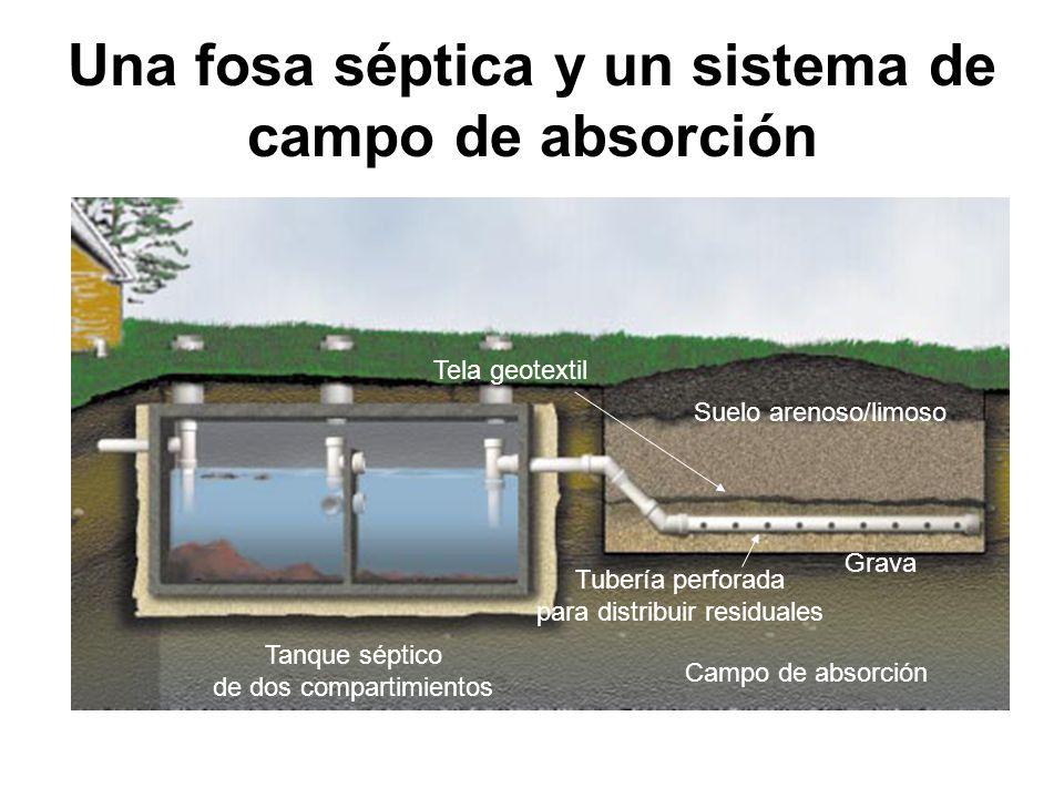 Una fosa séptica y un sistema de campo de absorción