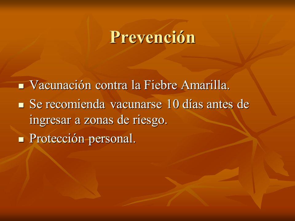 Prevención Vacunación contra la Fiebre Amarilla.