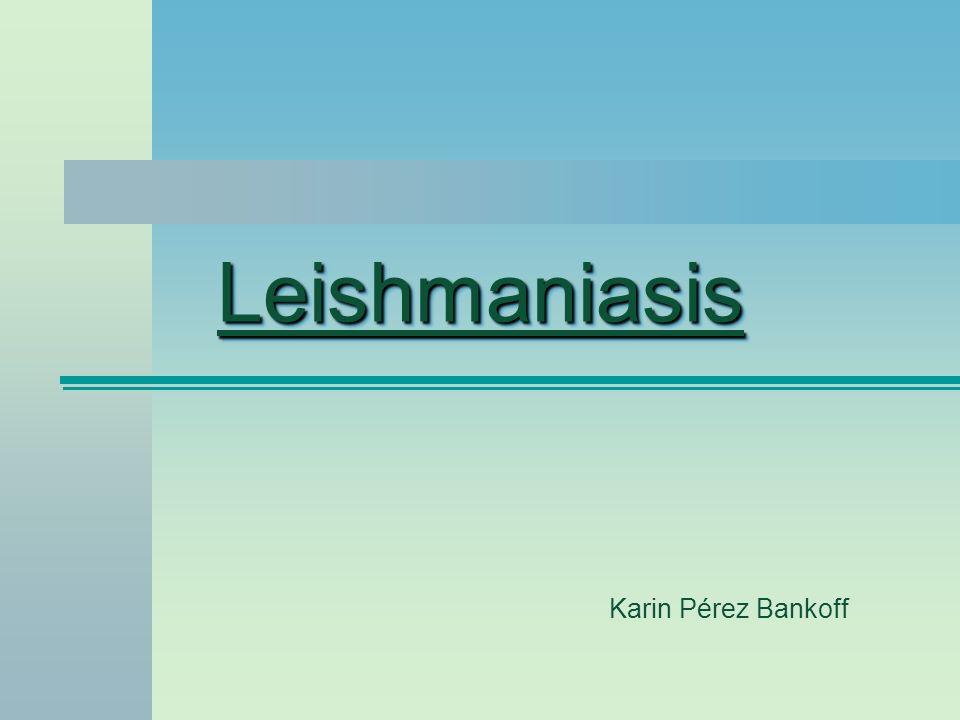 Leishmaniasis Karin Pérez Bankoff