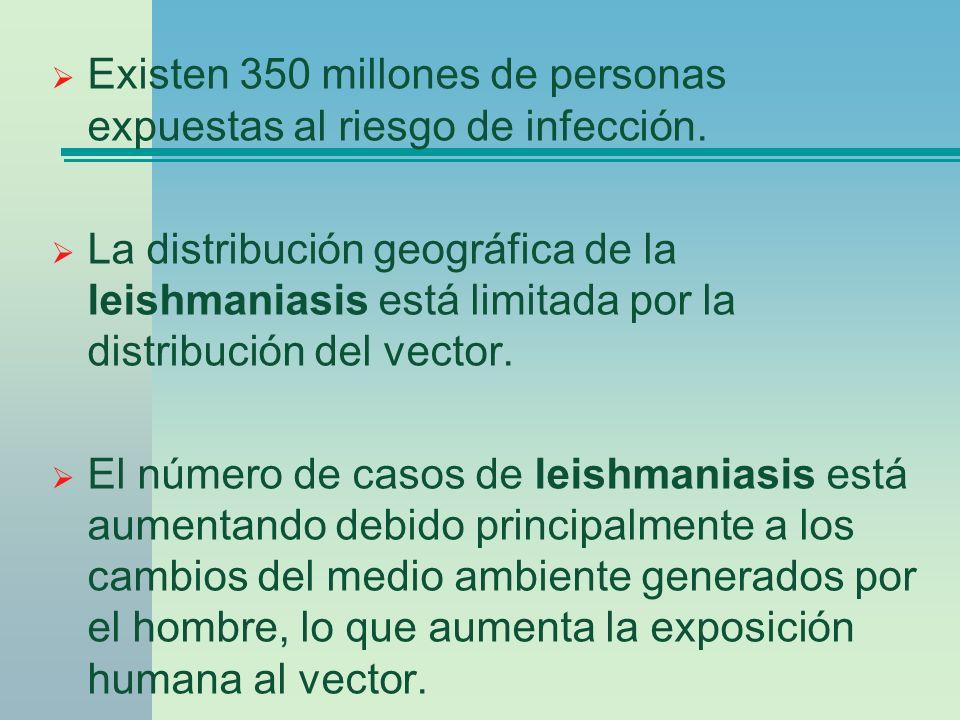 Existen 350 millones de personas expuestas al riesgo de infección.