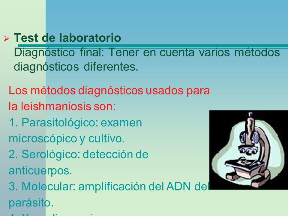 Test de laboratorio Diagnóstico final: Tener en cuenta varios métodos diagnósticos diferentes.