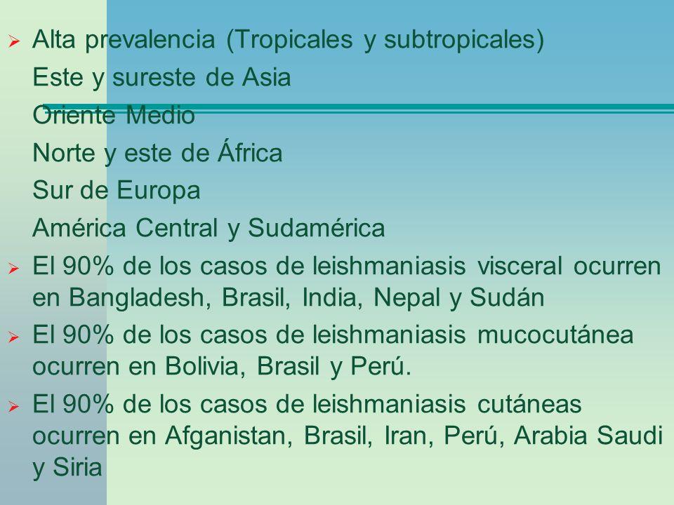 Alta prevalencia (Tropicales y subtropicales)