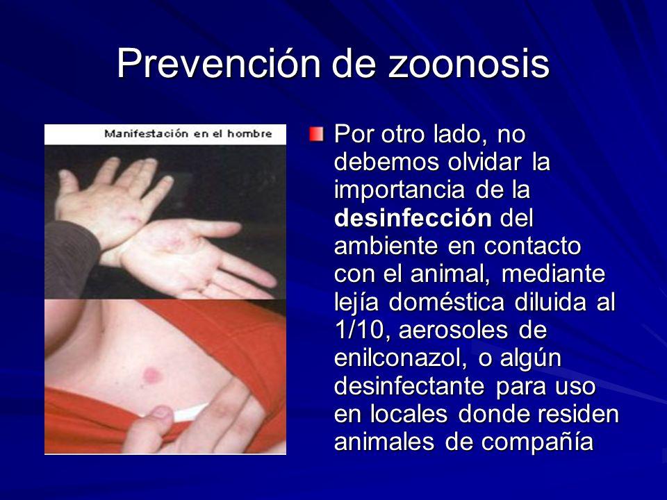 Prevención de zoonosis