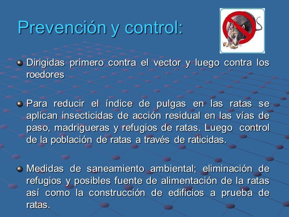 Prevención y control: Dirigidas primero contra el vector y luego contra los roedores.