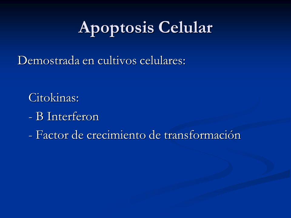 Apoptosis Celular Demostrada en cultivos celulares: Citokinas: