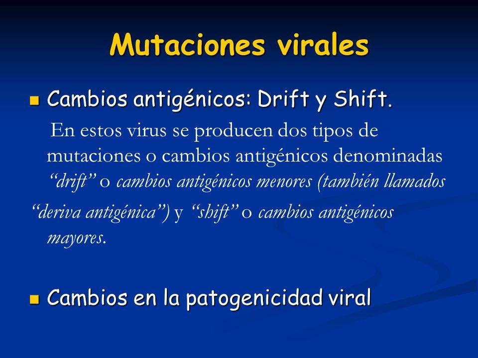 Mutaciones virales Cambios antigénicos: Drift y Shift.