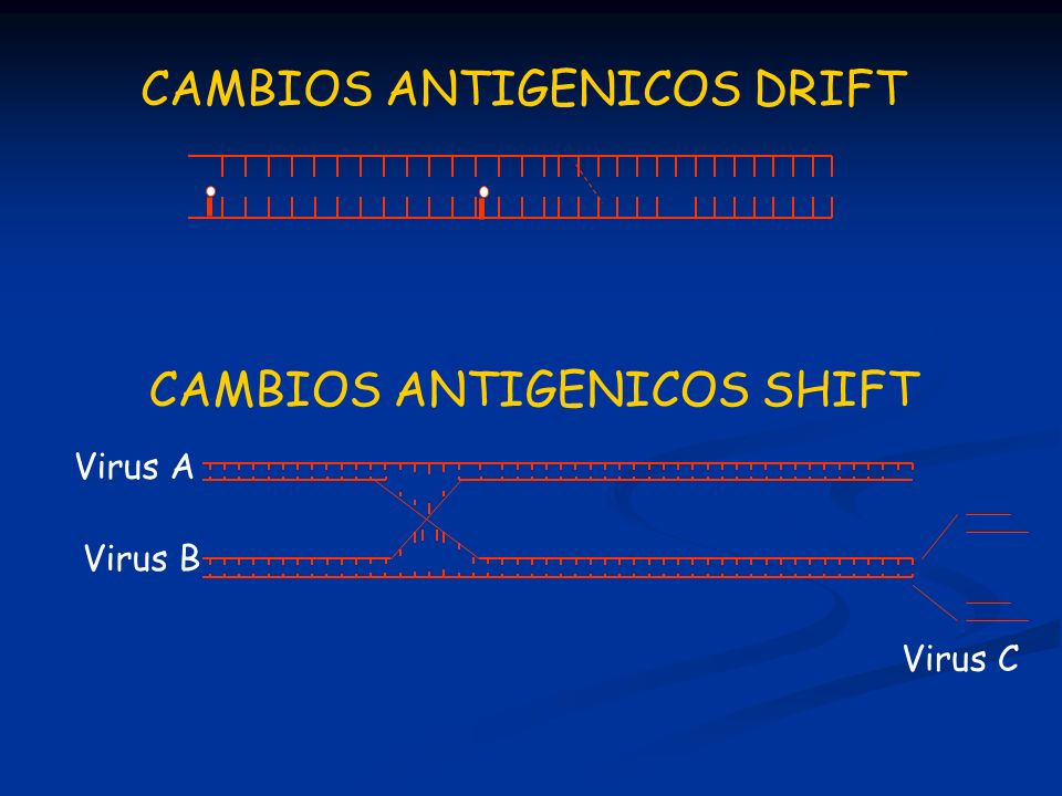 CAMBIOS ANTIGENICOS DRIFT