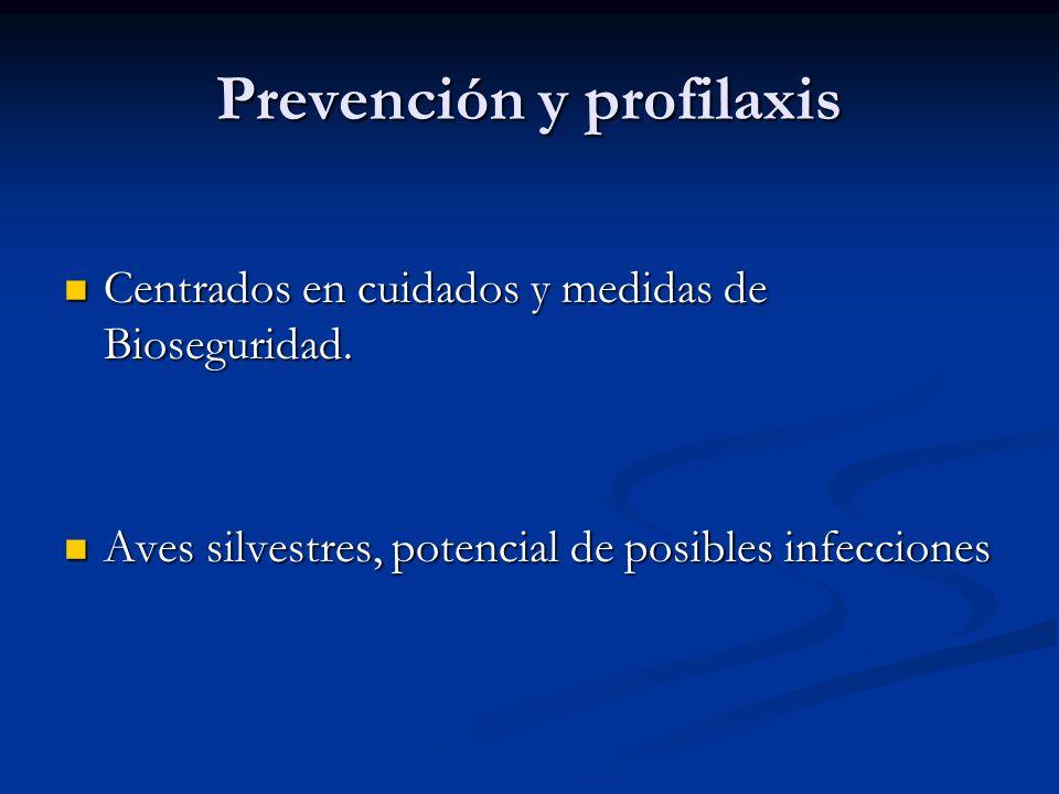 Prevención y profilaxis