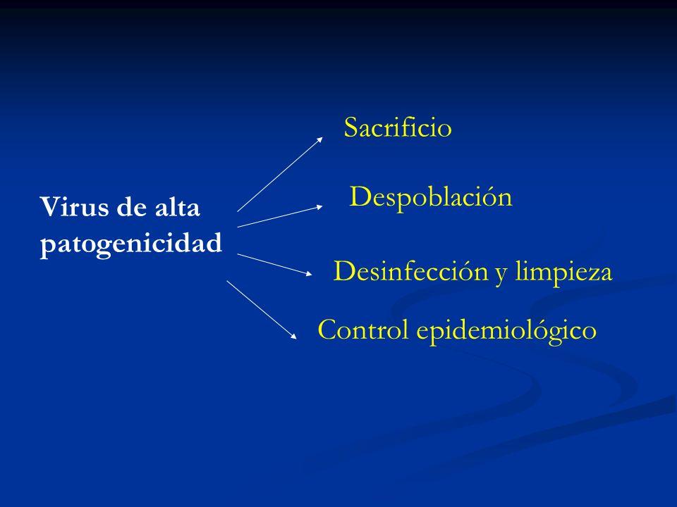 Sacrificio Despoblación Virus de alta patogenicidad Desinfección y limpieza Control epidemiológico