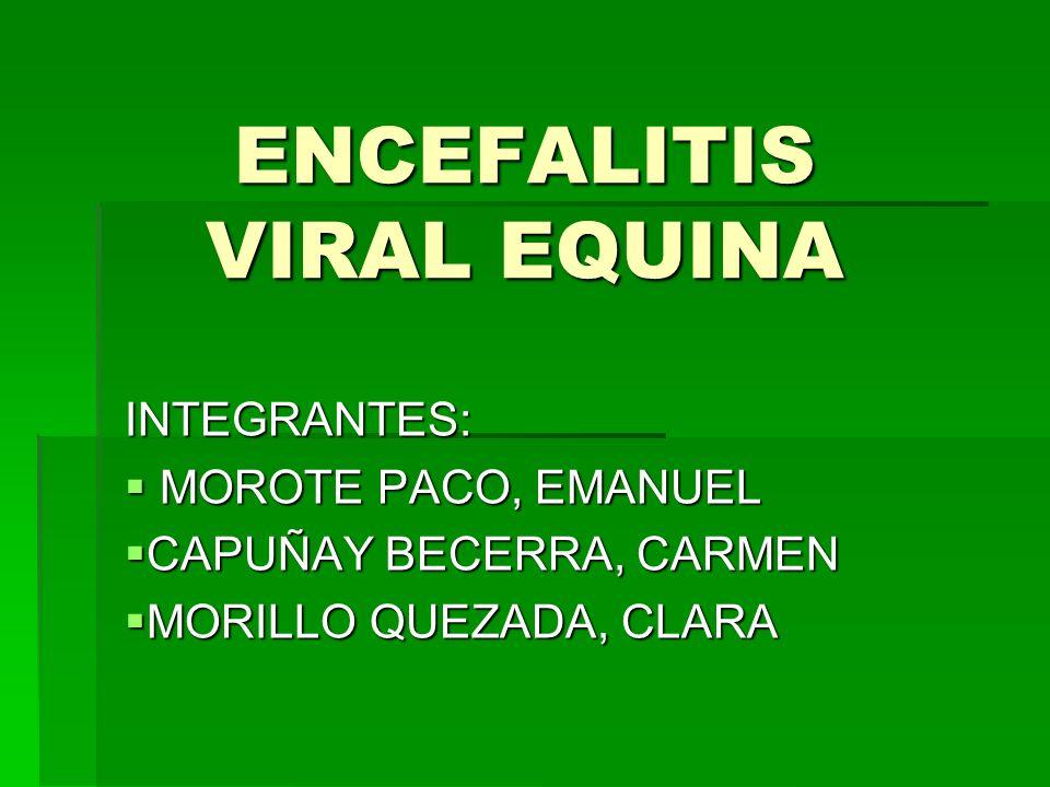ENCEFALITIS VIRAL EQUINA