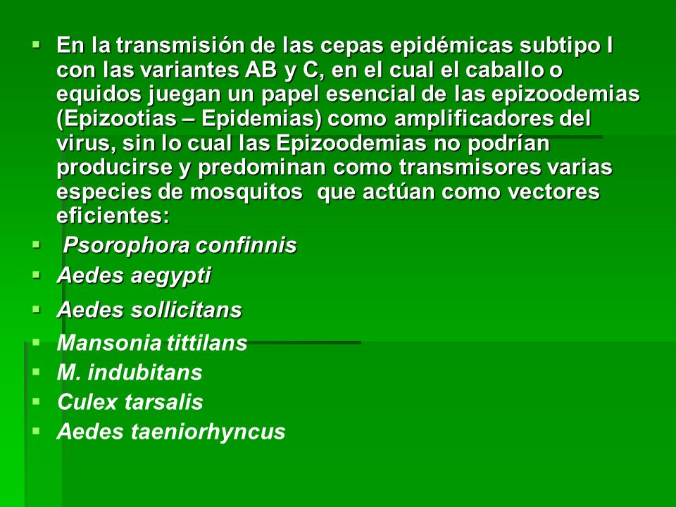 En la transmisión de las cepas epidémicas subtipo I con las variantes AB y C, en el cual el caballo o equidos juegan un papel esencial de las epizoodemias (Epizootias – Epidemias) como amplificadores del virus, sin lo cual las Epizoodemias no podrían producirse y predominan como transmisores varias especies de mosquitos que actúan como vectores eficientes: