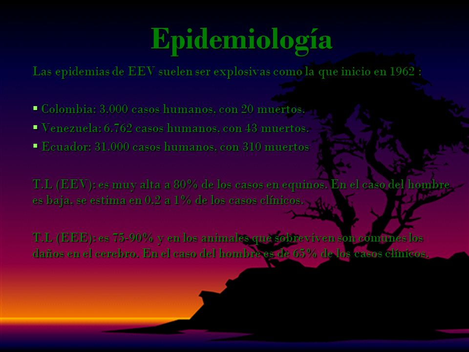 Epidemiología Las epidemias de EEV suelen ser explosivas como la que inicio en 1962 : Colombia: 3.000 casos humanos, con 20 muertos.