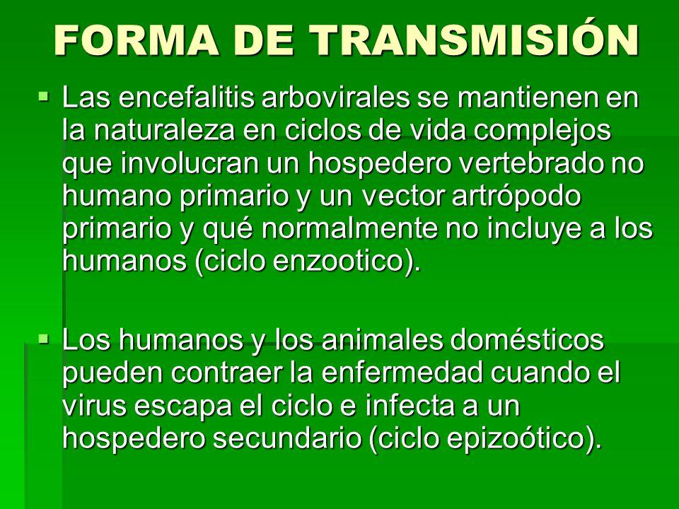 FORMA DE TRANSMISIÓN