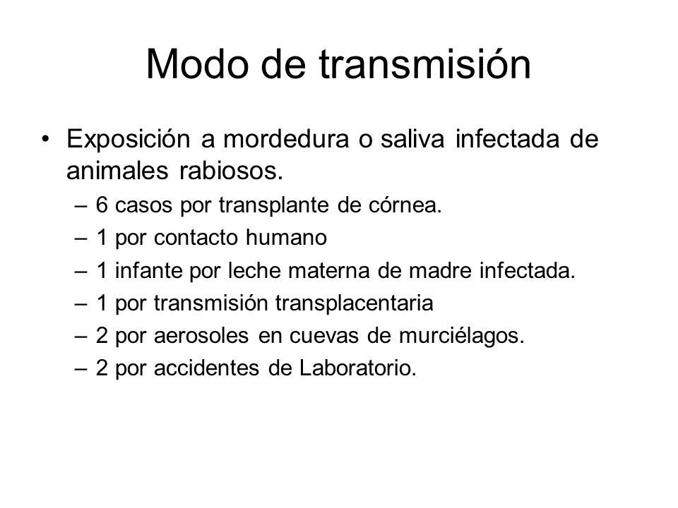 Modo de transmisión Exposición a mordedura o saliva infectada de animales rabiosos. 6 casos por transplante de córnea.