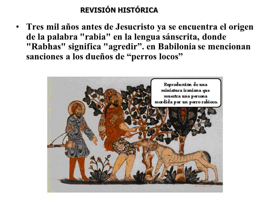 REVISIÓN HISTÓRICA