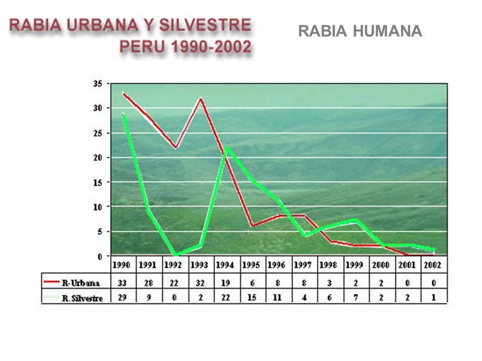 RABIA HUMANA