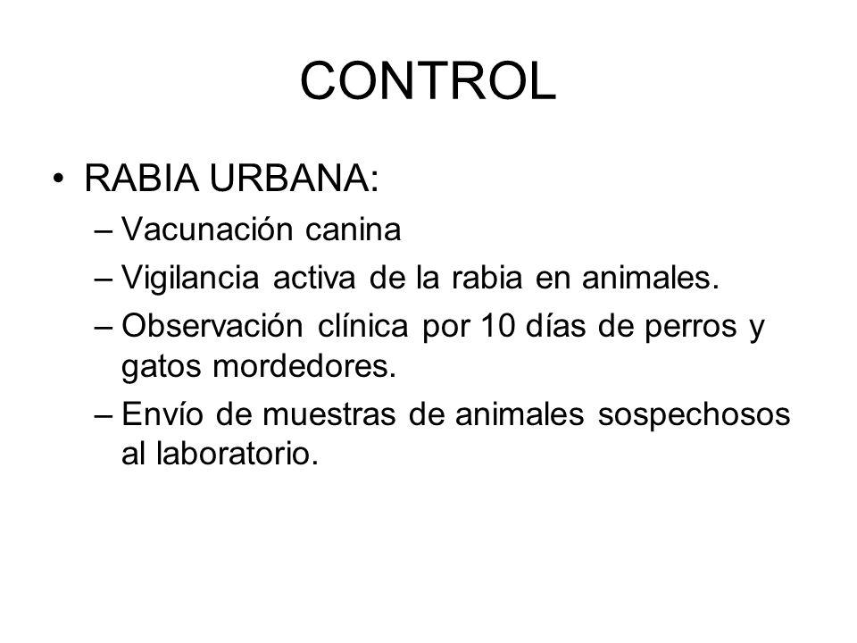 CONTROL RABIA URBANA: Vacunación canina