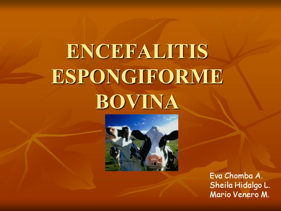 ENCEFALITIS ESPONGIFORME BOVINA