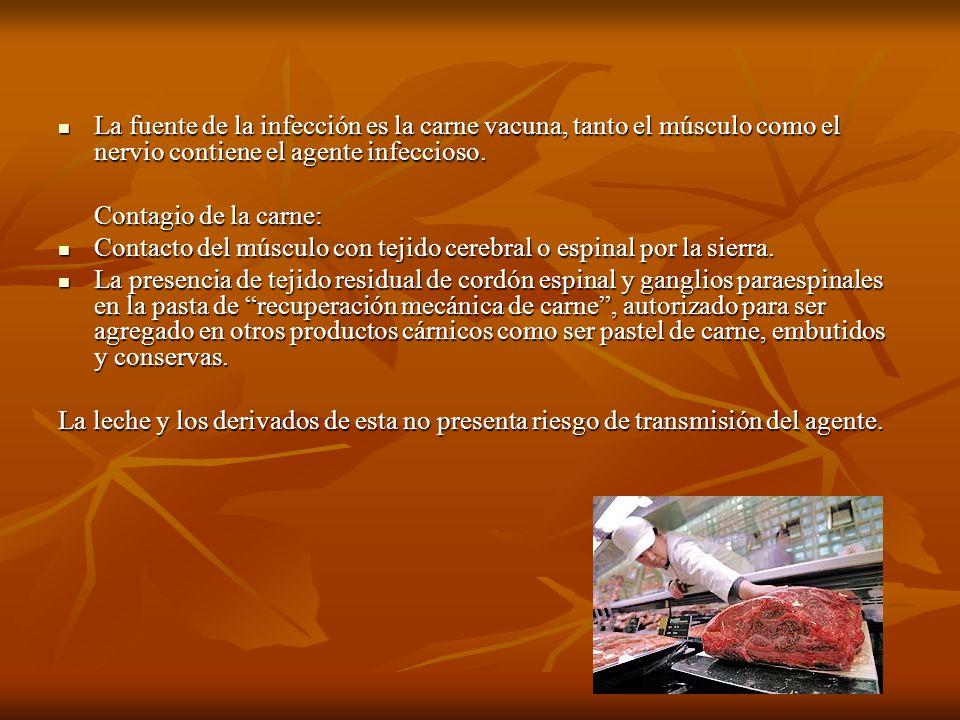 La fuente de la infección es la carne vacuna, tanto el músculo como el nervio contiene el agente infeccioso.