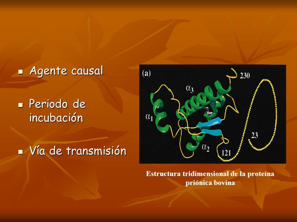 Estructura tridimensional de la proteína priónica bovina
