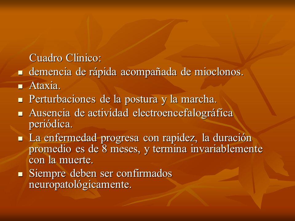 Cuadro Clinico:demencia de rápida acompañada de mioclonos. Ataxia. Perturbaciones de la postura y la marcha.