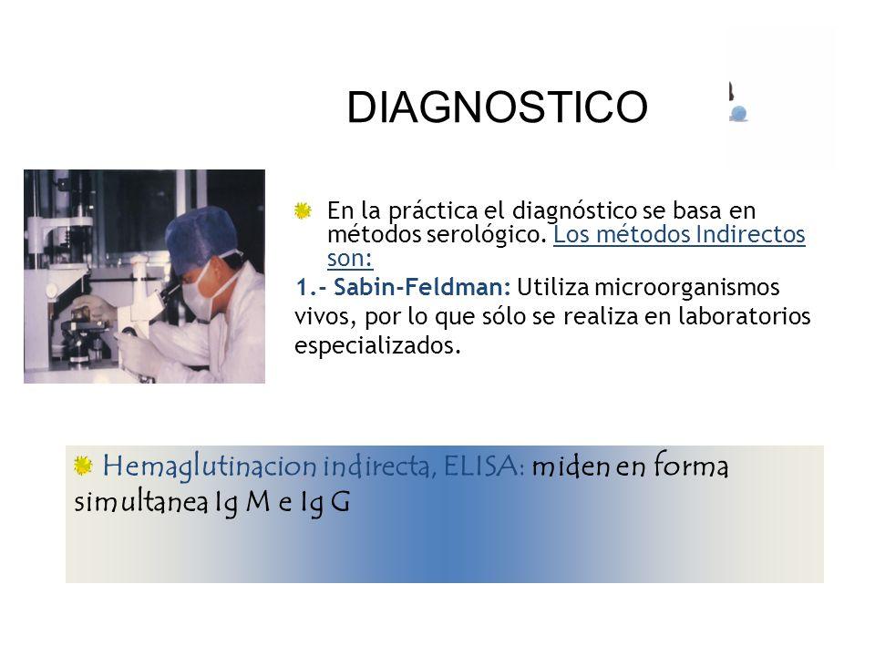 DIAGNOSTICO En la práctica el diagnóstico se basa en métodos serológico. Los métodos Indirectos son: