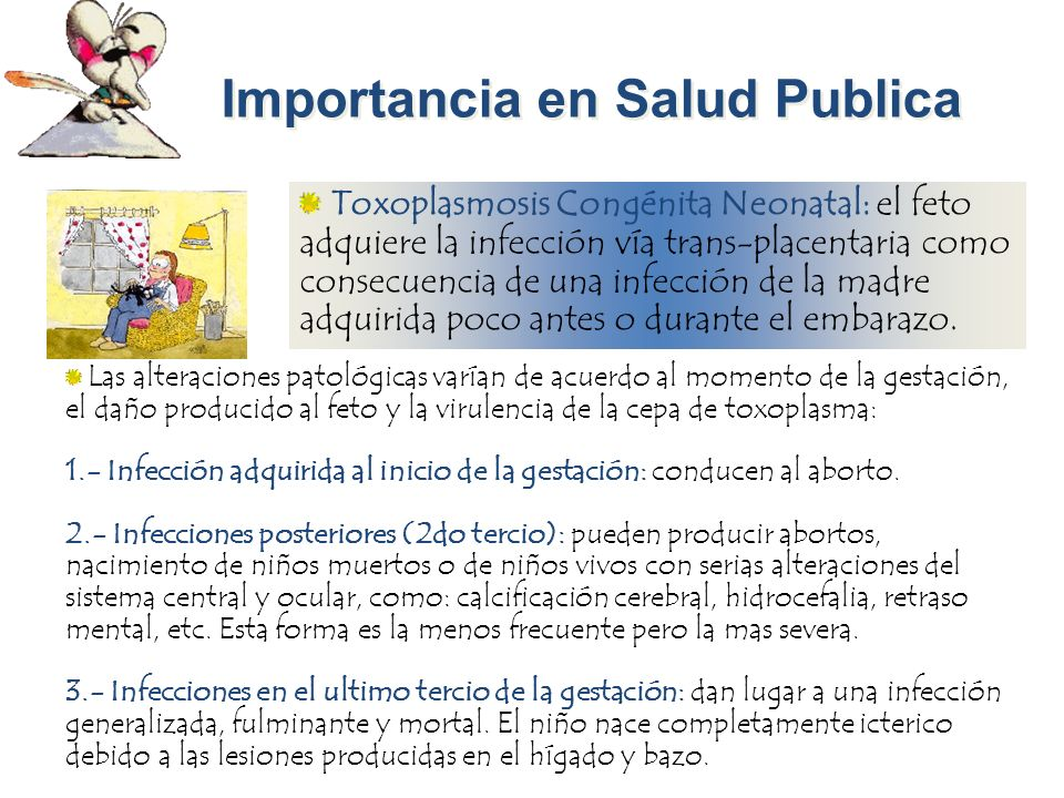 Importancia en Salud Publica