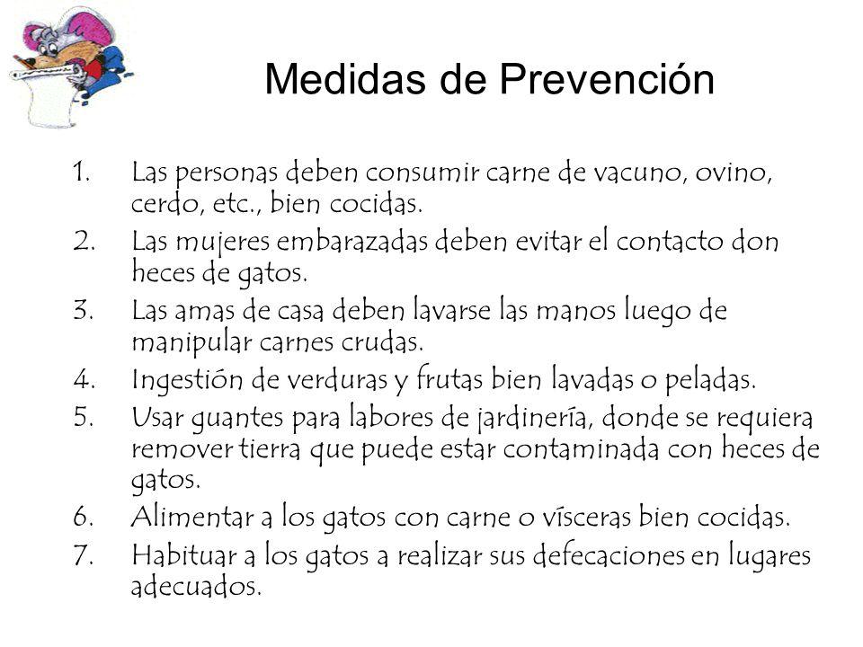 Medidas de Prevención Las personas deben consumir carne de vacuno, ovino, cerdo, etc., bien cocidas.