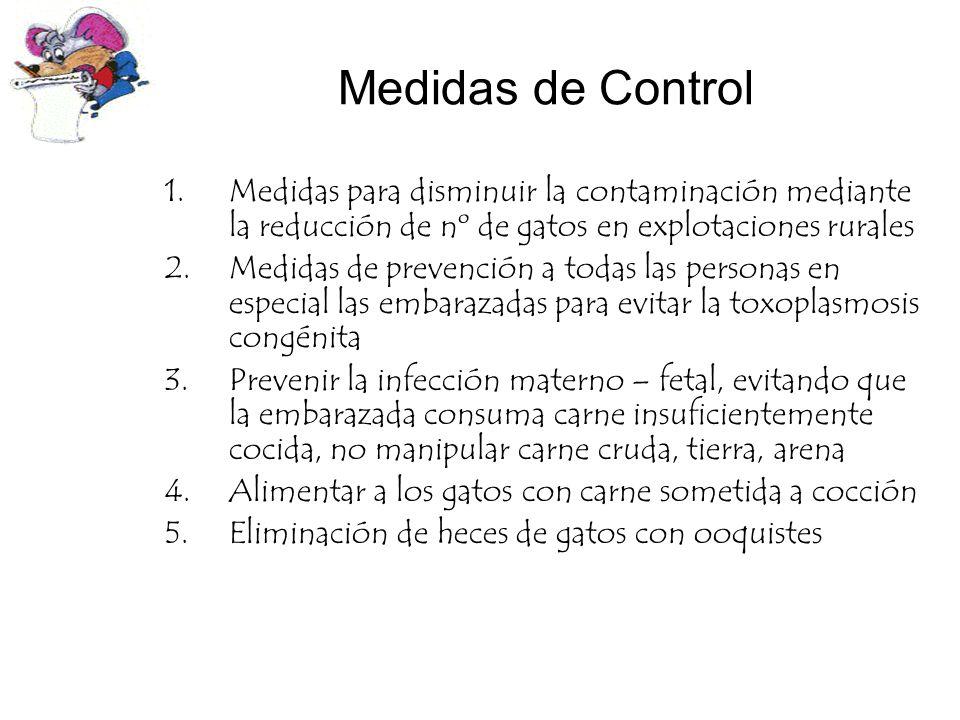 Medidas de Control Medidas para disminuir la contaminación mediante la reducción de nº de gatos en explotaciones rurales.