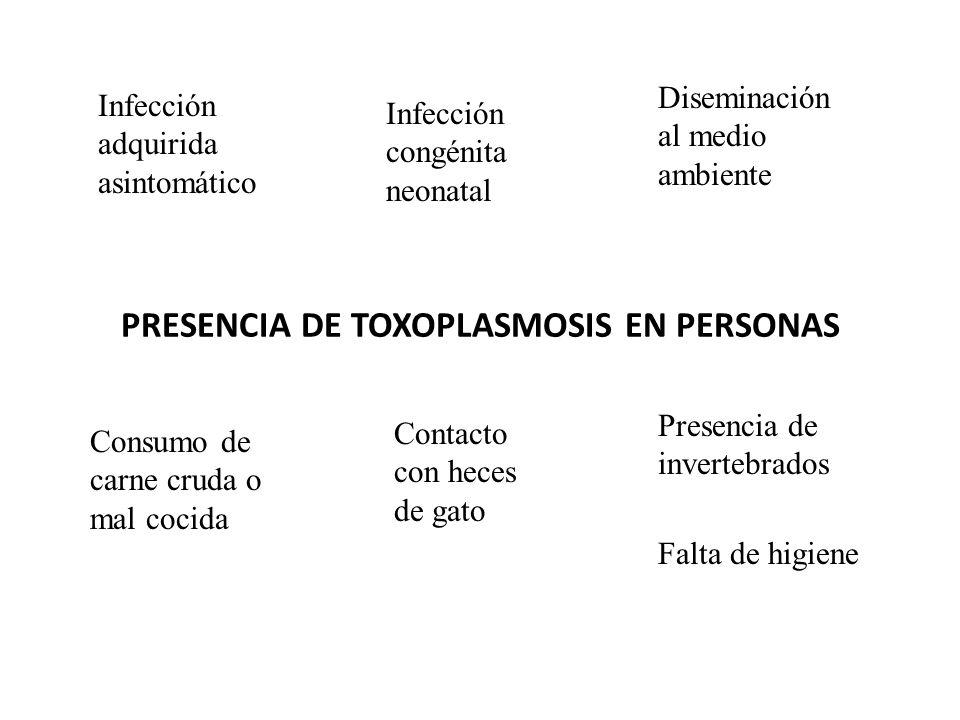 PRESENCIA DE TOXOPLASMOSIS EN PERSONAS