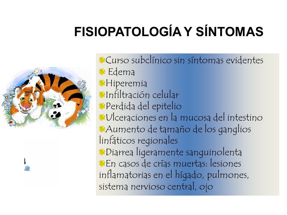 FISIOPATOLOGÍA Y SÍNTOMAS