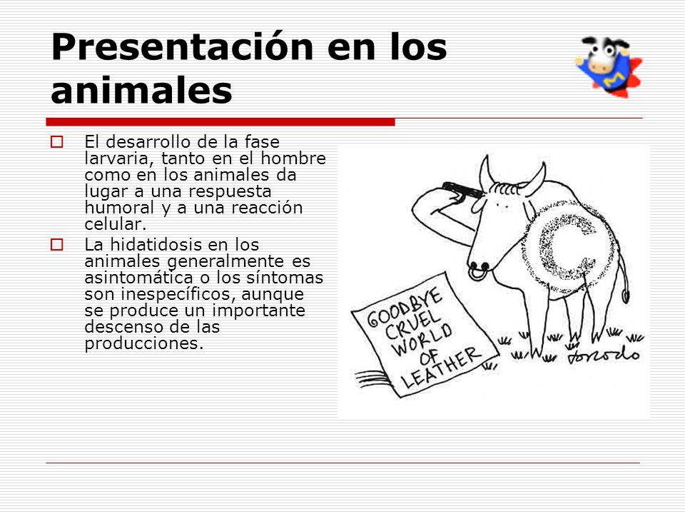 Presentación en los animales