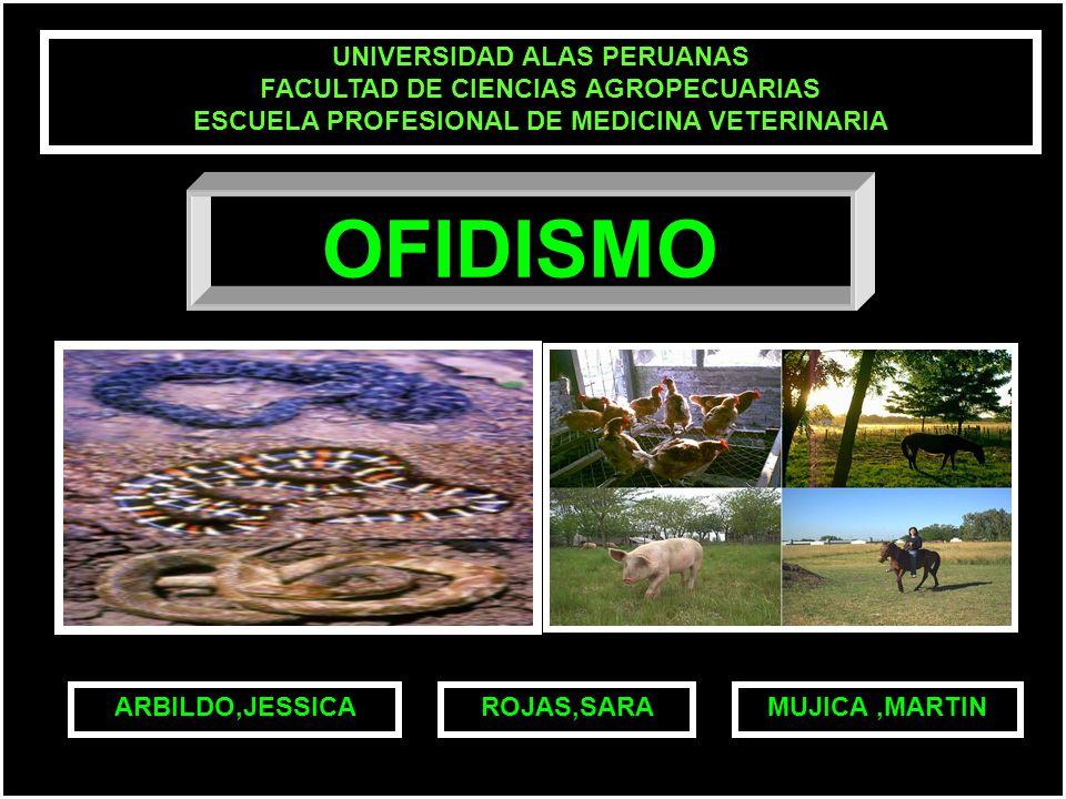 OFIDISMO UNIVERSIDAD ALAS PERUANAS FACULTAD DE CIENCIAS AGROPECUARIAS